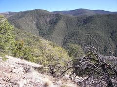 Devisadero Peak Trail, Taos Canyon