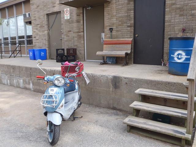 "Genuine Buddy Saint Tropez ""Franz Biberkopf"" in his tidy parking spot on the campus at Rhode Island College"