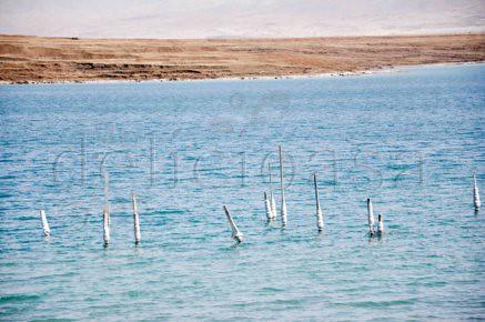 Marea Moarta 4