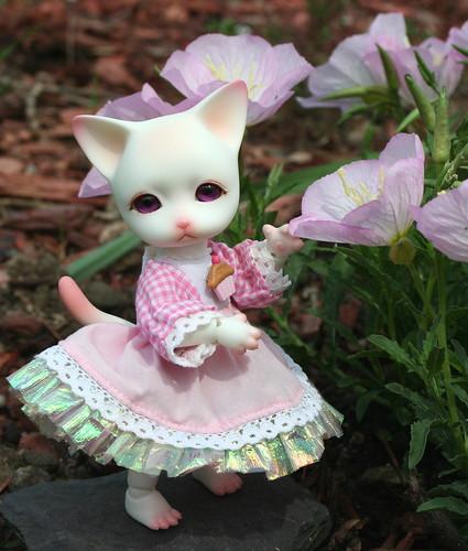 Pretty In Pink Phyzzlpyph