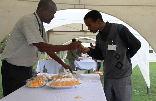 ILRI staff testing Mango at the IPMS experience-Sharing Workshop