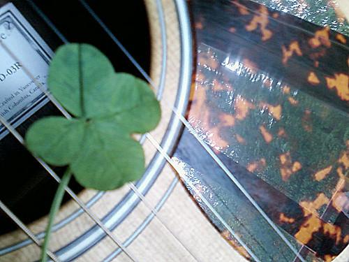 Four-leaf Clover Guitar by Karyn Ellis
