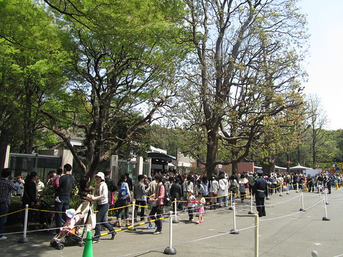 Pands fever in Ueno