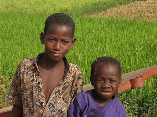 Enfants devant une rizière près de Banfora