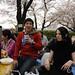 東京 日本。Tokyo Japan Sakura