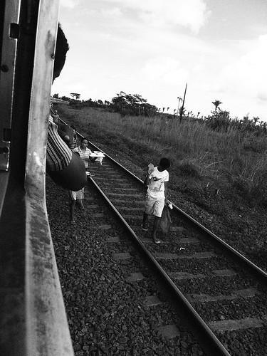 trainP1010047