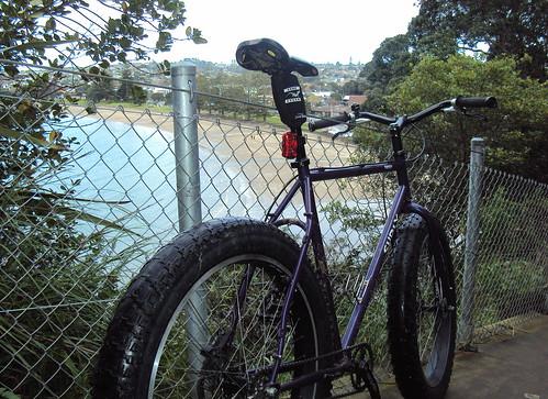 Browns Bay Clifftop Path