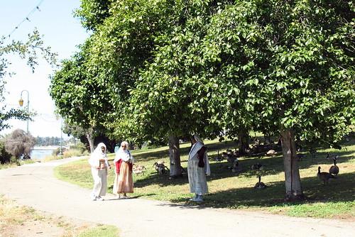 Ladies walking by the lake