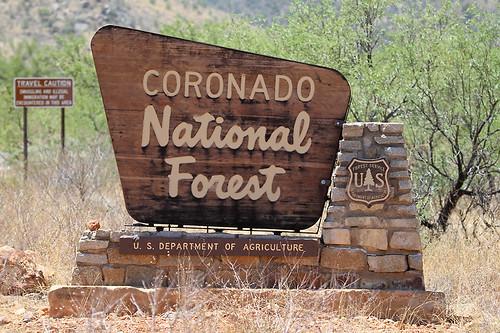 Coronado National Forest by SearchNetMedia