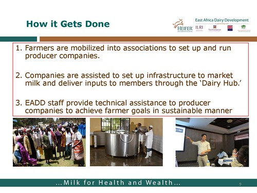 East African Dairy Development Project: How it gets done