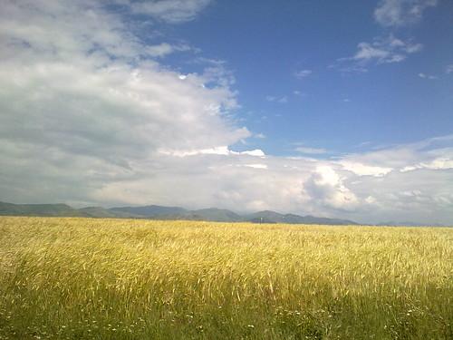 Haziran by Bastepe