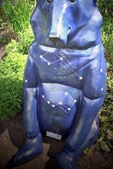 Congleton Bear 6