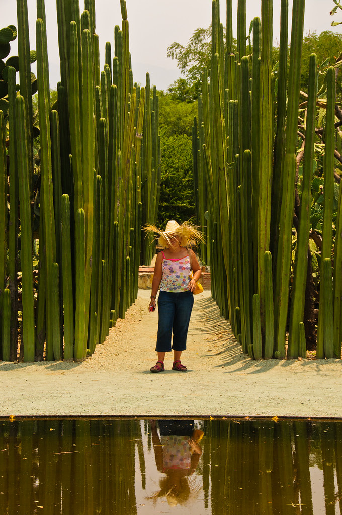 Part of the botanic garden, Santo Domingo, Oaxaca