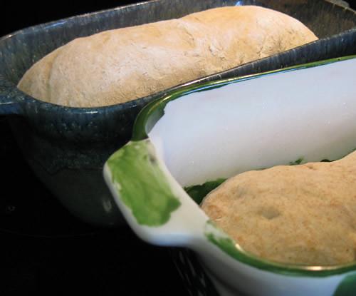 rising-bread