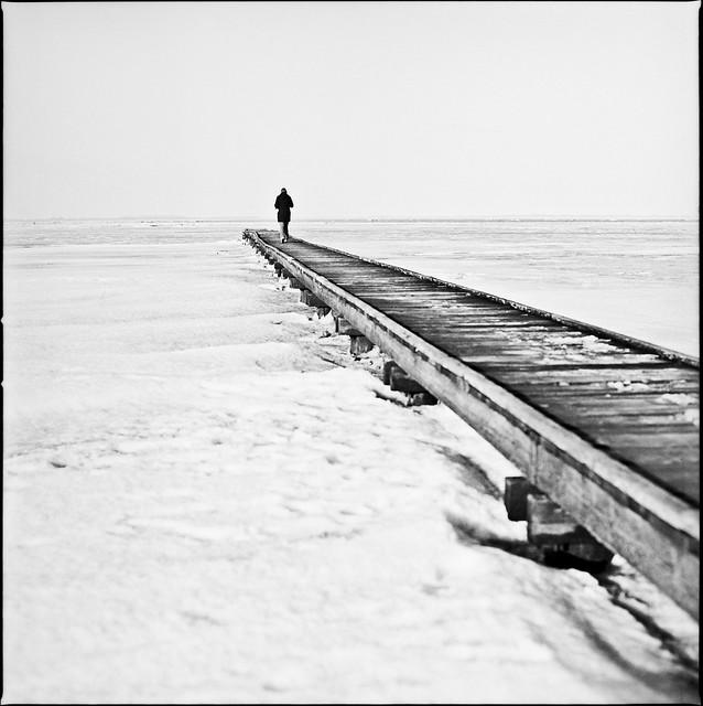 Pier into the frozen