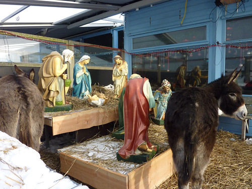 manger at Parnasia