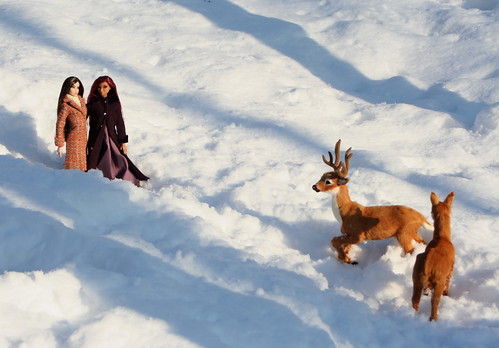 The Girls Glimpse A Pair Of Deer During A Stroll In The Snow