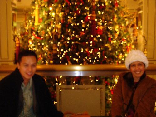 Houston Christmas Tree Farm