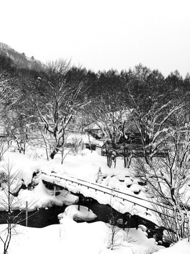 iPhone 4. Japanese winter
