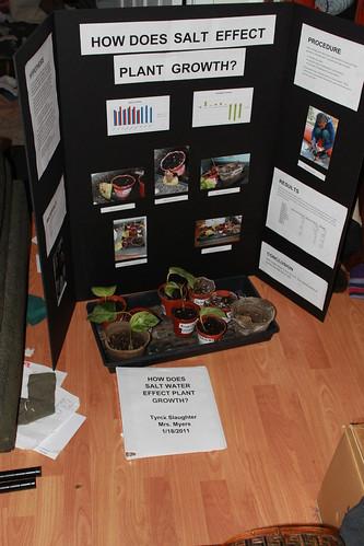 Tyrek Science Fair - Backboard, Plants and Report