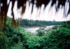 Juma Lodge | Amazon Forest