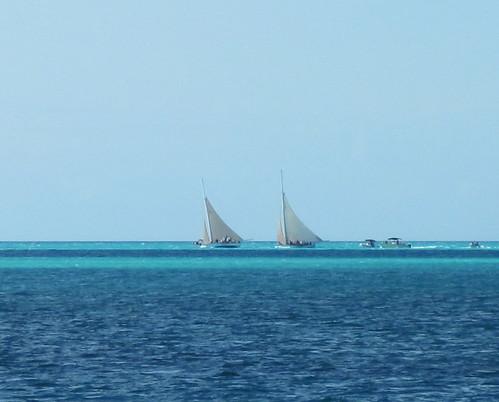 Bahamian sloops racing