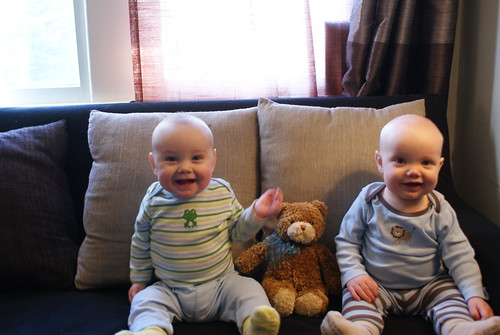 Seven Months Old!