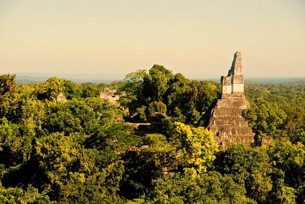 Ruinas de Tikal - Guatemala