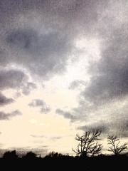 Post-Rain Sky II