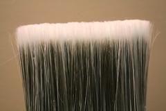 Paint Brush 206/365