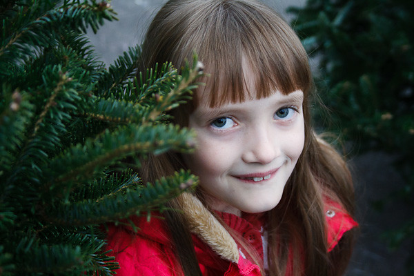 The big one guards the Christmas tree she chose