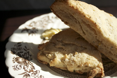 Lemon Poppy Seed Scones (vegan)