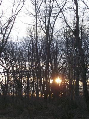 20110311_setting_sun_photo