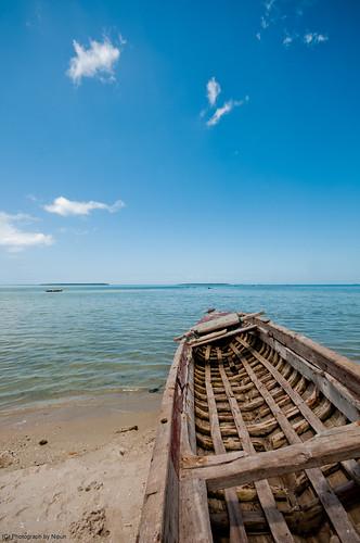 Oh! Zanzibar.