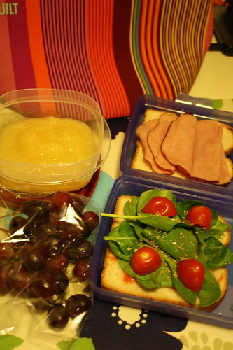 applesauce, red grapes, ham sandwich