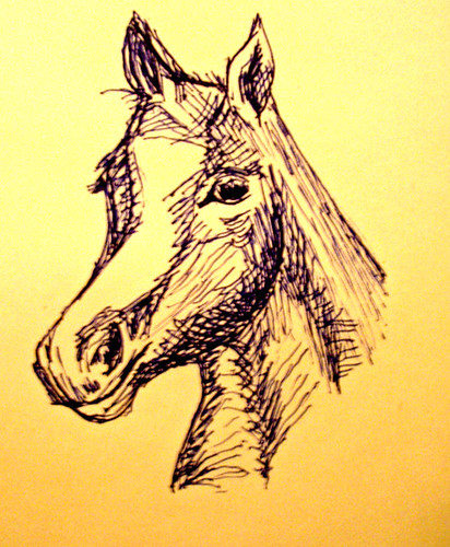 Horse - quick sketch with ballpoint pen