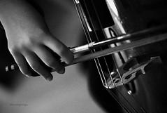 (63/365) El sonido de casa by albertopveiga