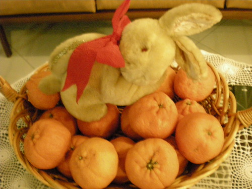 CNY2011 - mandarin oranges