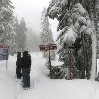 Greater Vancouver Snowshoe - Black Mountain Plateau Winter Trail