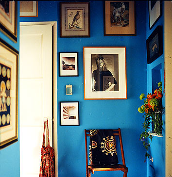 Domino 2007 blue hall