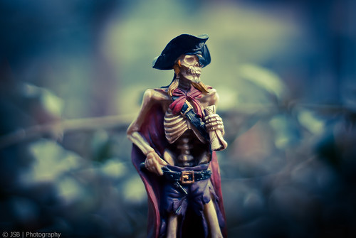 Bloody Pirate!