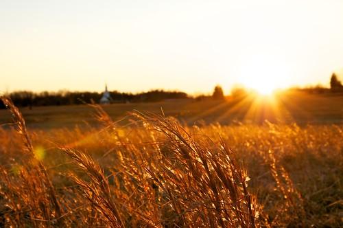 Reidville at Sunset