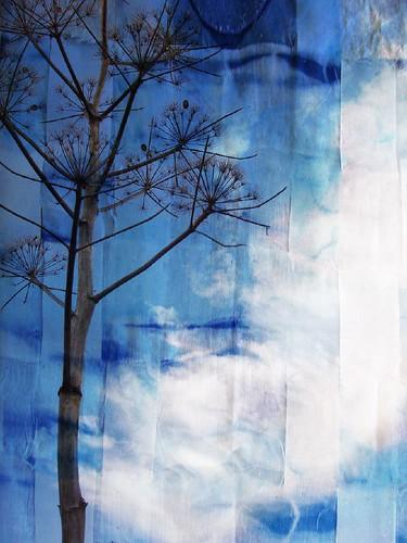 wild fennel sky01-Jills moon fabric texture overlay copy