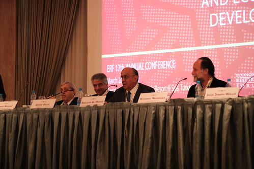 ERF 17th Annual Conference - Panel Plenary Session 1