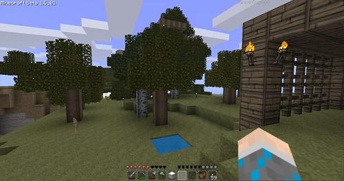 Minecraft - New Forest