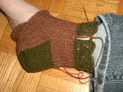 Garden Stroll Socks - Sock 1 progress