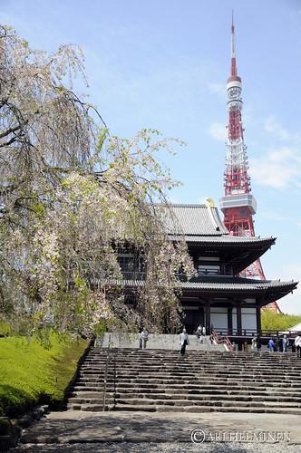Shrine & Tokyo Tower 東京, 日本。Tokyo Japan