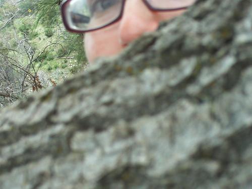 Self-Portrait By Tree