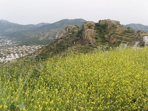 201105010158_view-towards-Gundogan