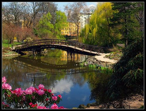 Botanical Garden / Ogród Botaniczny